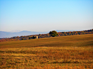 nature old photo people autumn hill