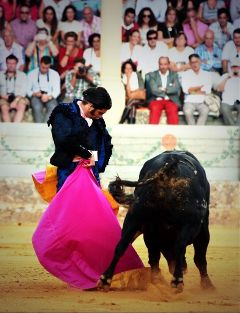 #bullfight #morante #toros photography