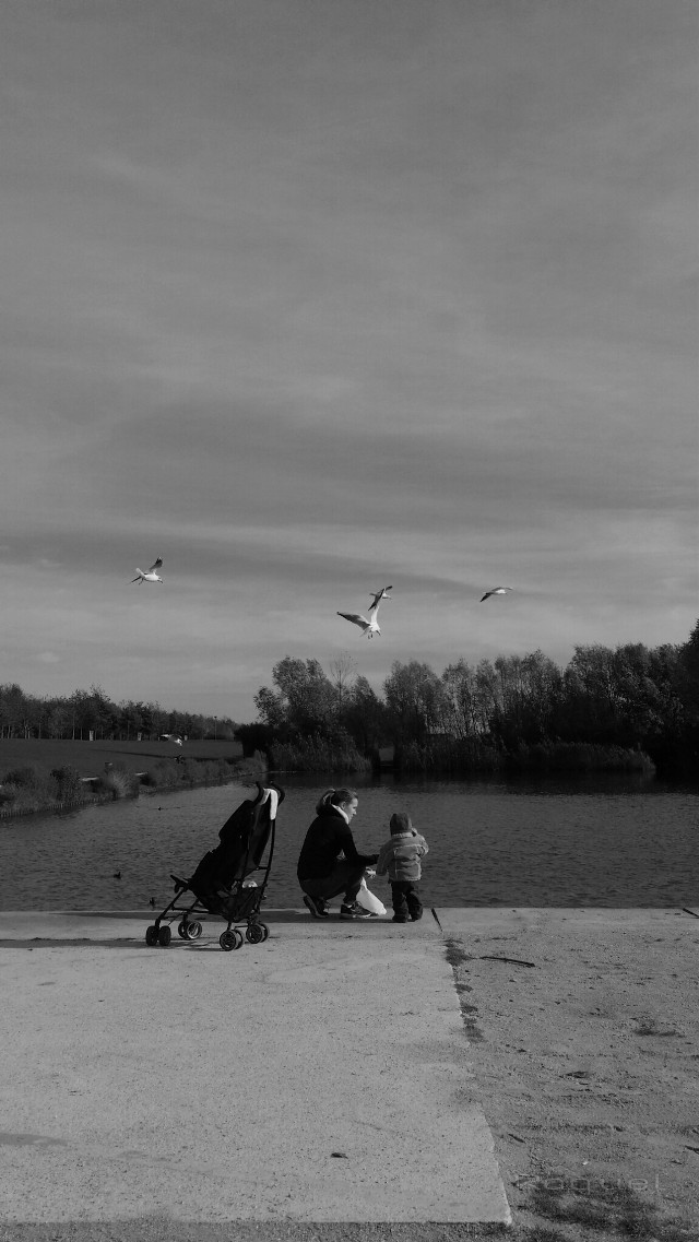 for the tag #myfamily #black & white  #baby #people #nature #mysanctuary